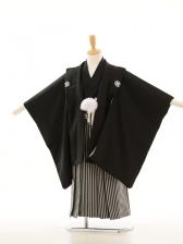 753レンタル(5歳男)5014黒 羽織袴