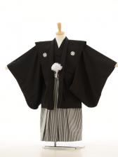 753レンタル(5歳男)5017肩衣羽織 黒