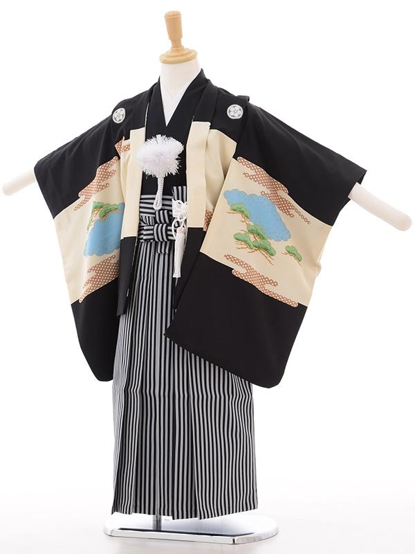 753レンタル(5歳男)5108タカに富士黒地グレーくもどり