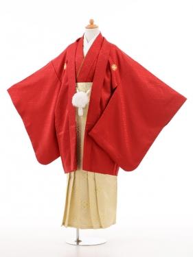 小学生卒業式袴男児D009赤×白ゴールド袴