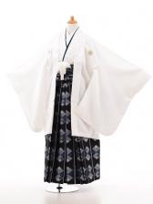 ジュニア着物男児D012白×紺袴