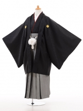 ジュニア着物男児D004黒×白シルバー袴