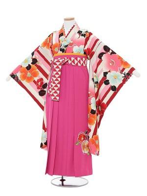 小学生卒業式袴レンタル0030紅一点ピンクストライプ椿×ピンク袴
