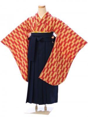 卒業式小学生女の子袴セット GR-001