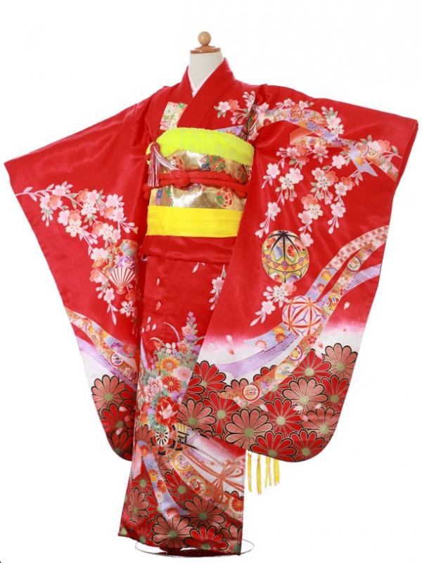 753レンタル(7歳女)2072赤福寿草