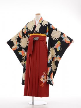 小学生卒業式袴女児9011黒地大輪菊に蝶の舞