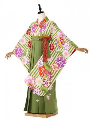 小学生卒業式袴レンタル(女の子) 緑 モダンストライプ 9275