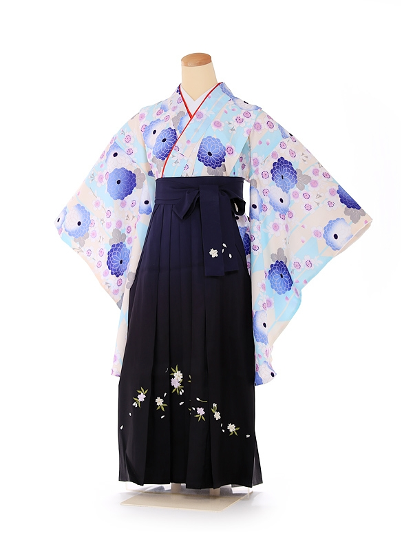 ジュニア袴 水色×紺 菊桜 9188