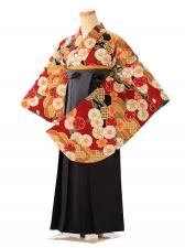 女袴 赤古典桜 オレンジ袴 FC9143