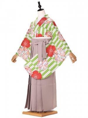 小学生卒業式(女の子) hiromichinakano 緑 矢羽 9264