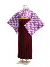 十三参り袴 13HP 紫矢絣【身長160cm位】