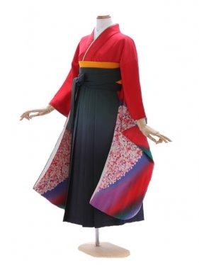 女児ジュニア着物48/赤地にグリーン紫ぼかし桜