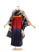 女児ジュニア着物501/桜に裾編み模様