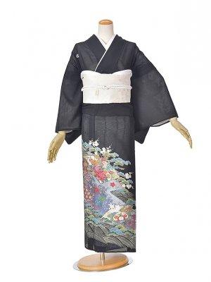 黒留袖(夏)紫扇面RT013