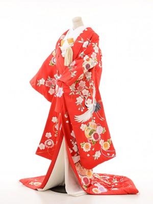 色打掛250赤鶴マリに枝垂桜