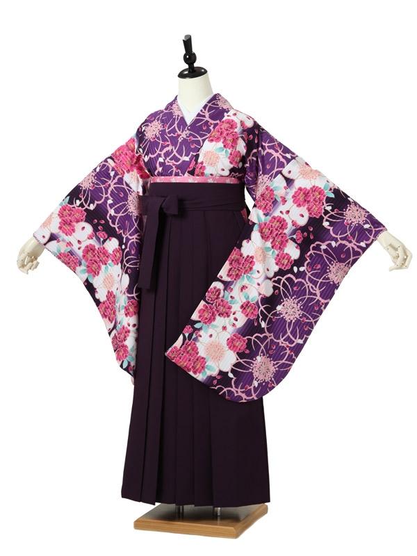 女性袴0054 紫 桜