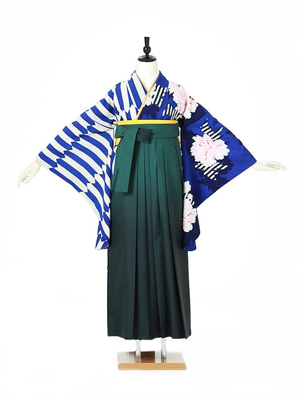 女性袴0044 青 縞に牡丹