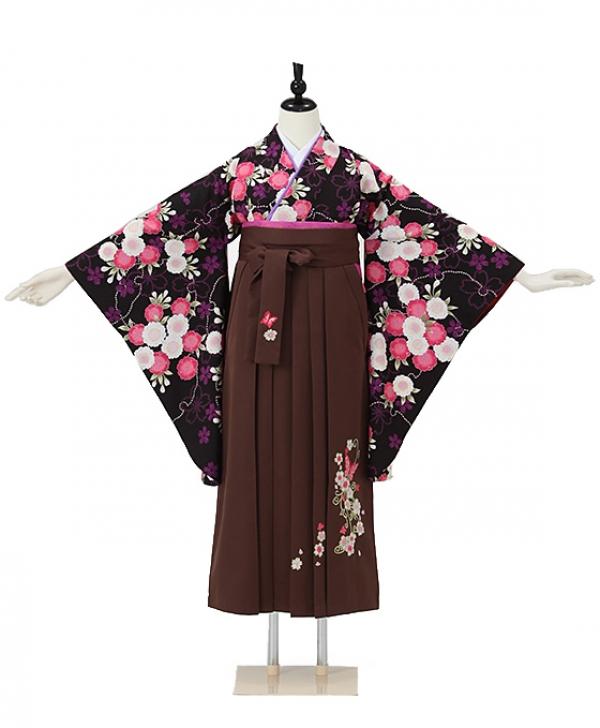 女性袴0062 黒 桜
