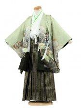 七五三(3男)3094 淡緑/刺繍鷹