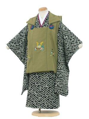 七五三レンタル(3歳男被布)3-69 緑地/卍繋ぎ