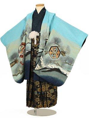 七五三(5男袴)5151 水色 鷹と松