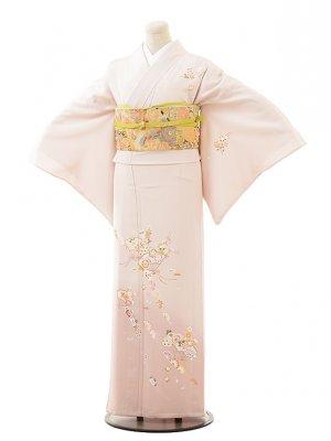 夏訪問着t0515 ピンク地扇橘(正絹(単衣))