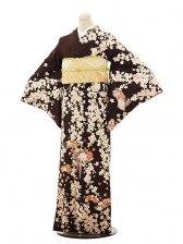 訪問着レンタル0534 H・L こげ茶 桜(ポリ)