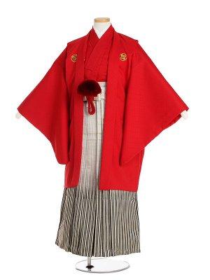 小学生卒業袴男054M赤菱/金白黒ぼかし