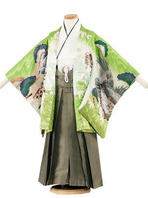 七五三レンタル(5歳男袴)5180 グリーン色×梅鷹