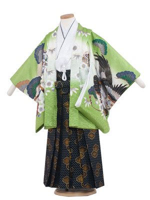 七五三レンタル(5歳男袴) 5162 緑色/鷹と松竹梅