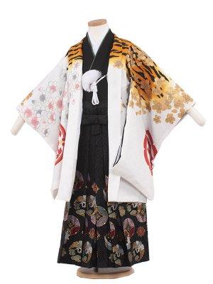 七五三レンタル(5歳男袴) 5104 白/虎桜吹雪