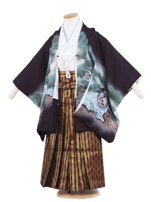 七五三レンタル(5歳男袴) 5056 黒色/刺繍兜と松葉