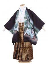 七五三(5男)5056 黒色/刺繍兜と松葉