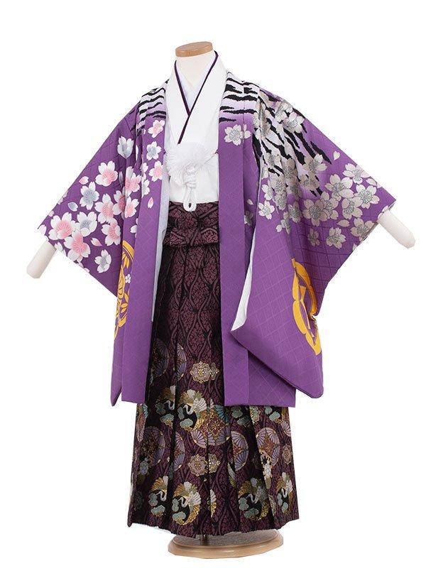 七五三・卒園式袴レンタル(5男)5136 紫/虎桜吹雪