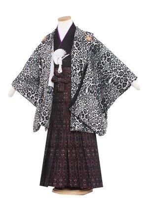 七五三レンタル(5歳男袴)5227 黒地/ヒョウ柄