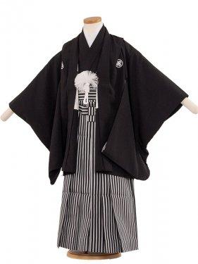 七五三(5男)5112 定番黒紋付60cm
