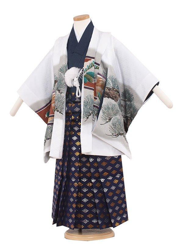 七五三・卒園式袴レンタル(5男)5131 白/鷹と松