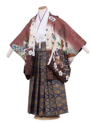 七五三レンタル(5歳男袴)5199 茶色×梅兜