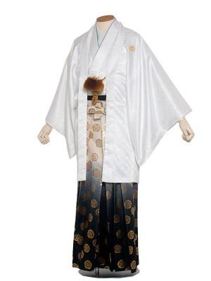 男性用袴 紋服5号 白 / ぼかし袴5H40