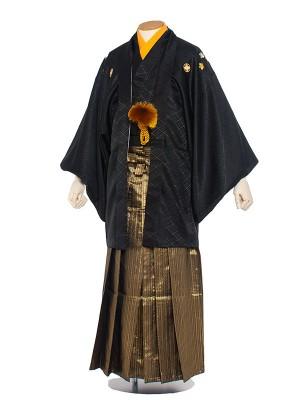 男性用袴 紋服5号黒紋付金袴/5B20