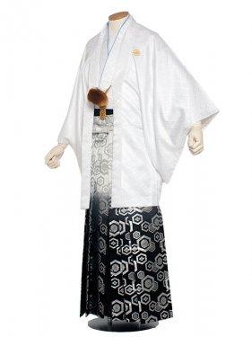 男性用袴 紋服5号白/5H30