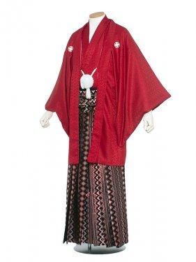 男性用袴 紋服5号赤色2/5R00