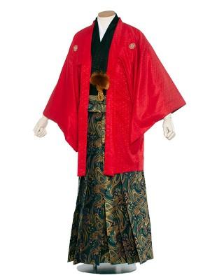 男性用袴 紋服5号赤色 紋付/5R06