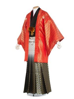 男性用袴 紋服5号 赤 花菱模様/5R04