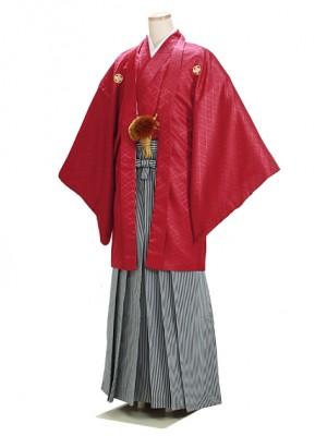 男紋付袴 卒業式 成人式 エンジ赤 3Lサイズ