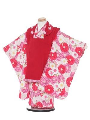 七五三レンタル(3歳女被布)H338 JAPAN STYLE クリーム地