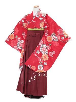 小学生卒業式袴レンタル(女の子)A004 赤地華紋×エンジ袴