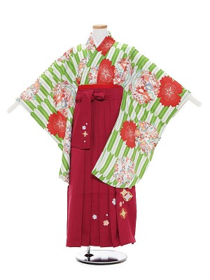 小学生卒業式袴レンタル(女の子)A033 グリーン 矢柄 花×ローズ袴