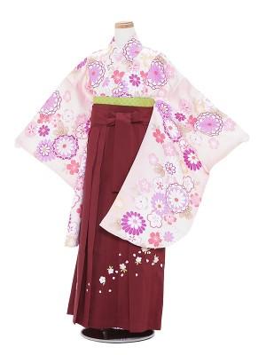 小学生卒業式袴レンタル(女の子)A003 白地華紋×エンジ袴
