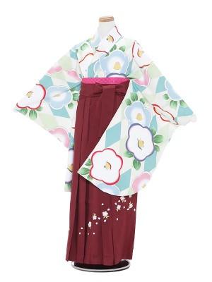 小学生卒業式袴レンタル(女の子)A007 白地白水色梅×エンジ袴
